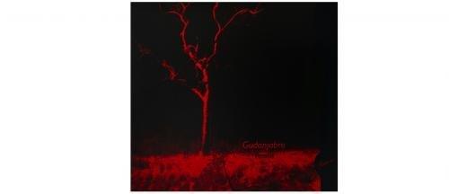 Gudanjabro - Versus album cover